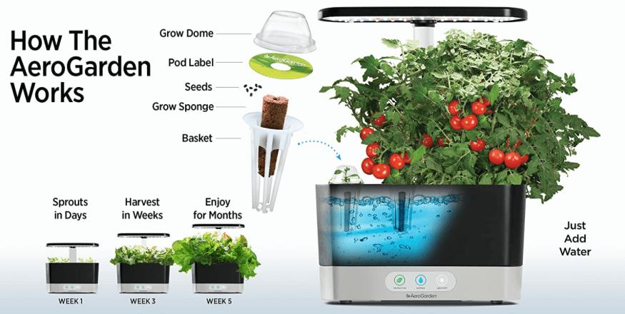 An illustration of how Aerogardens can grow a plant